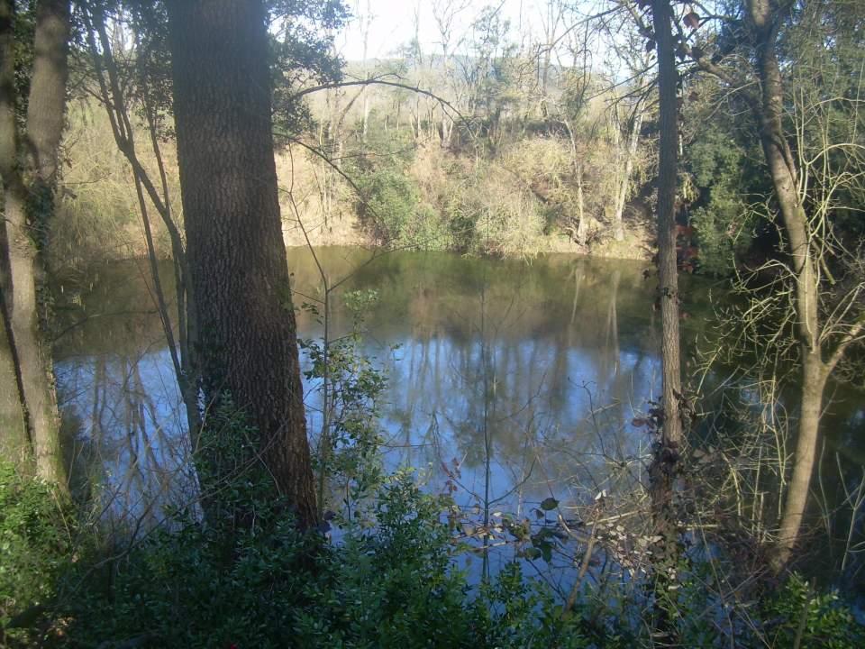 Dia mundial de zones humides a l'espai natural de l'estany de Banyoles