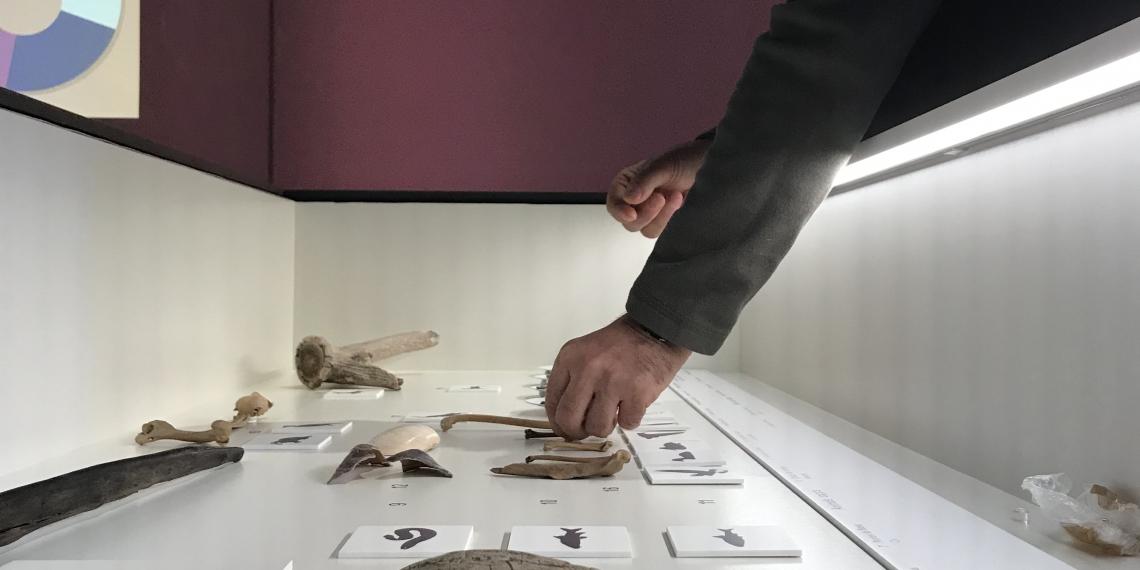 """Exposició """"La revolució neolítica. La Draga, el poblat dels prodigis"""""""