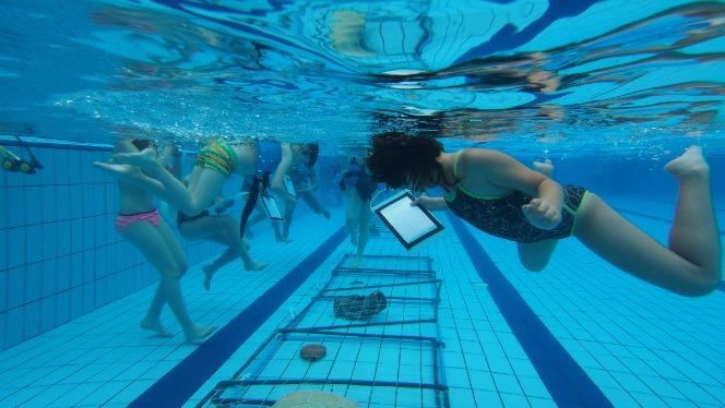 """Activitat """"Fem d'arqueòlegs subaquàtics de la Draga"""""""