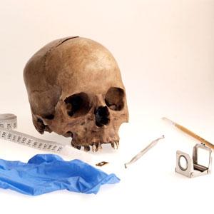 Activitat Familiar- Què ens expliquen els ossos? -Vine a fer d'antropòleg!