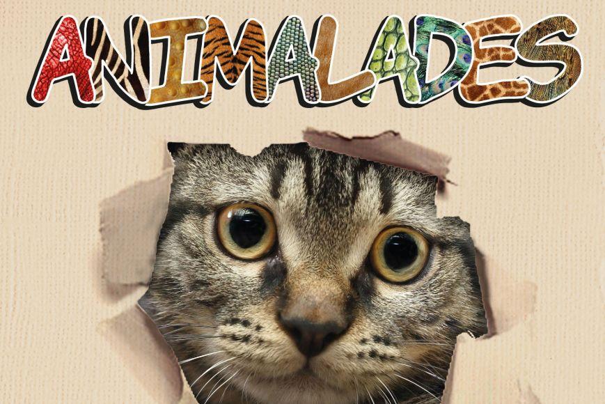 "Activitat infantil - Hora del conte ""Animalades"""