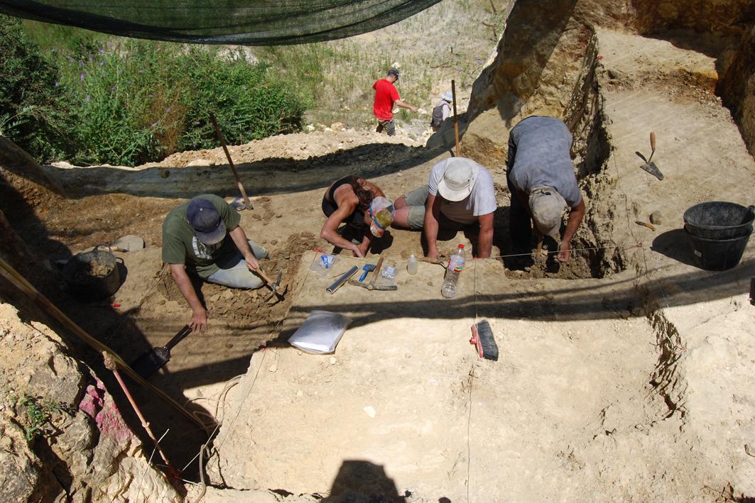 VII Cicle de Conferències d'Actualitat Arqueològica a les Comarques Gironines - Mamuts, Hipopòtams i tigres dents de sabre al Pla d'Estany fa un milió d'anys