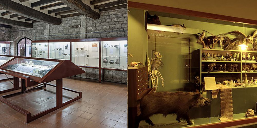 Dia Internacional dels Museus - Jornada de portes obertes als museus de Banyoles