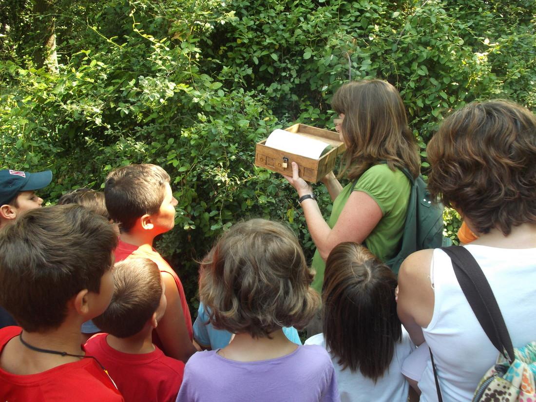 Joc familiar de descoberta - L'enigma del bosc de les goges