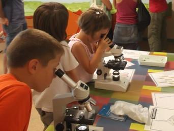 Experiments i activitats de Camp - Fem de científics a l'estany: descobrim el plàncton