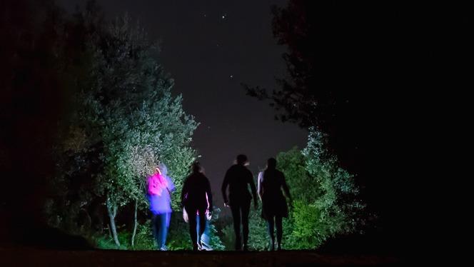 6a Caminada nocturna de Mata, Porqueres