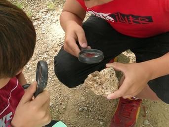 Experiments i activitats de camp - Fem de científics a l'estany