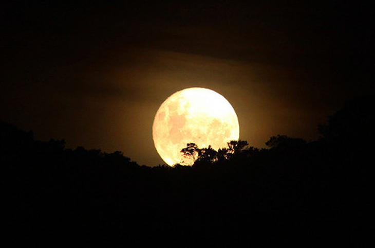 VI Trobada a la Muralla. Nit Internacional d'Observació de la Lluna