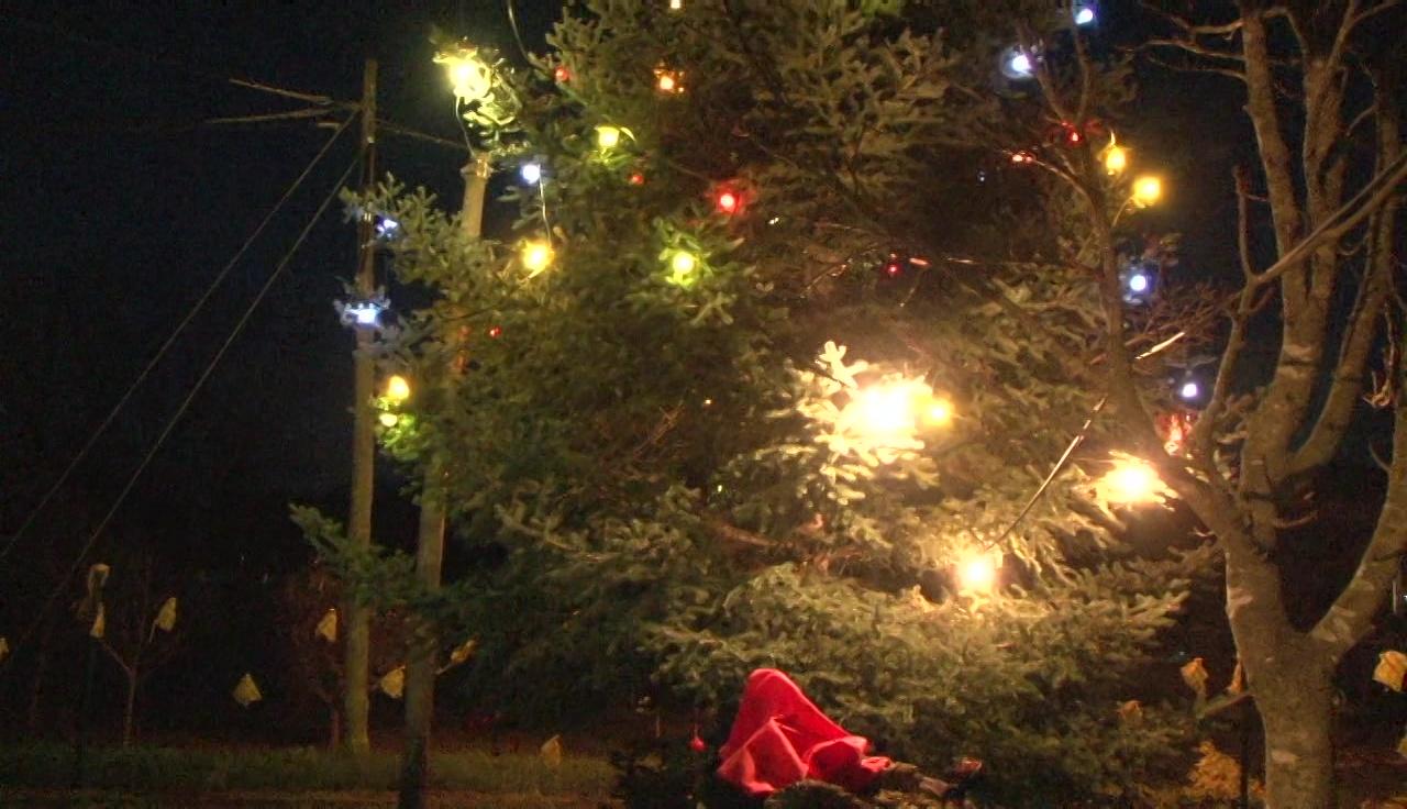 Encesa dels llums de Nadal a Sant Miquel de Campmajor