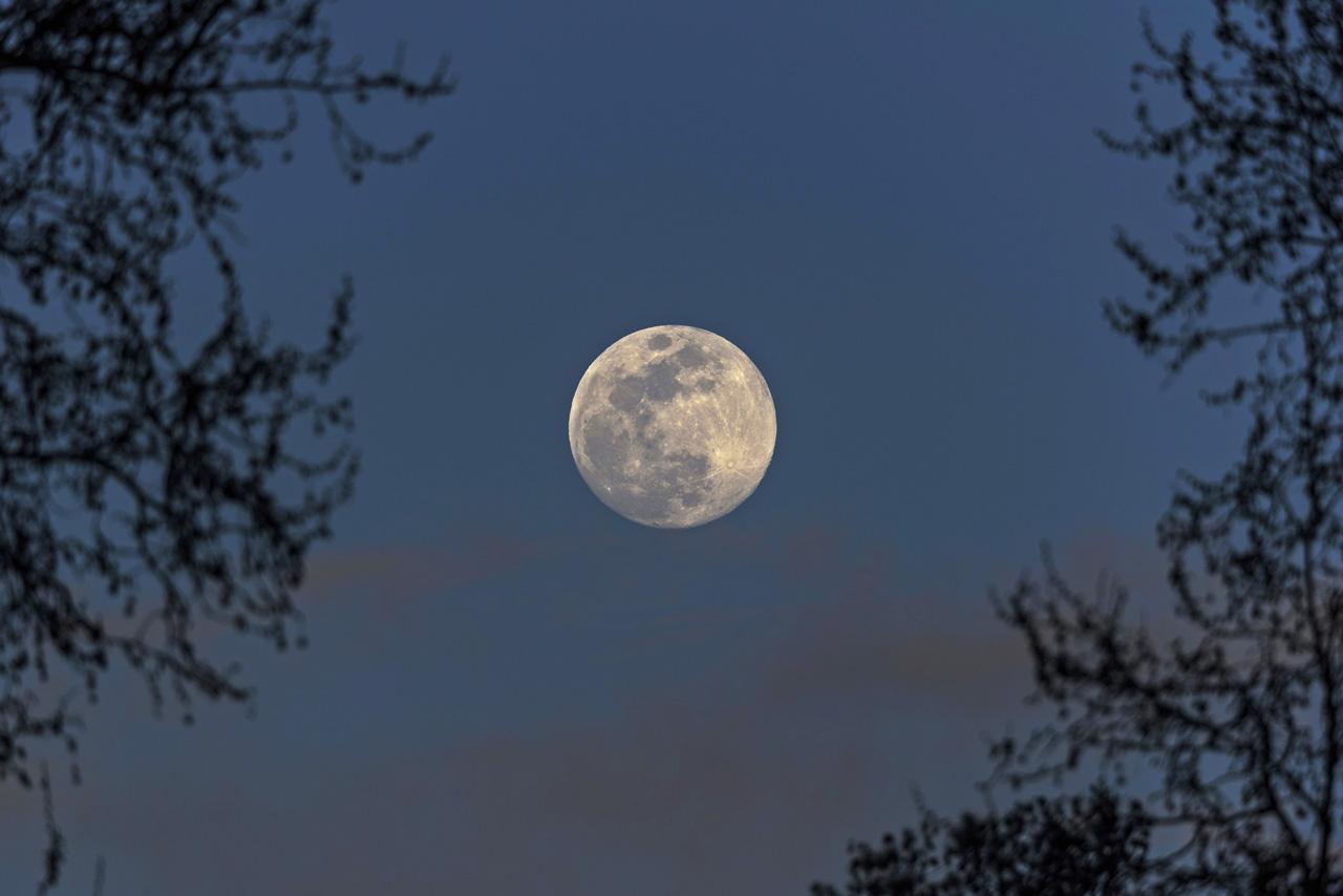 Meditació en lluna plena