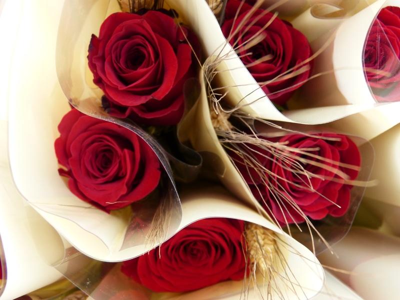 Diada de Sant Jordi a Banyoles