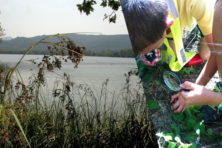 Exploradors de l'estany, activitat familiar: