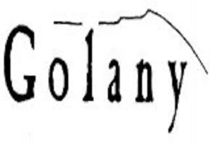 Aniversari revista Golany
